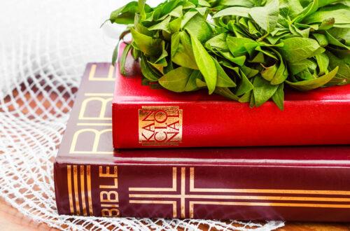 bible-still-life
